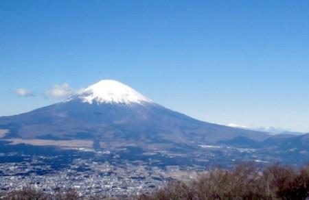 富士山金時161208