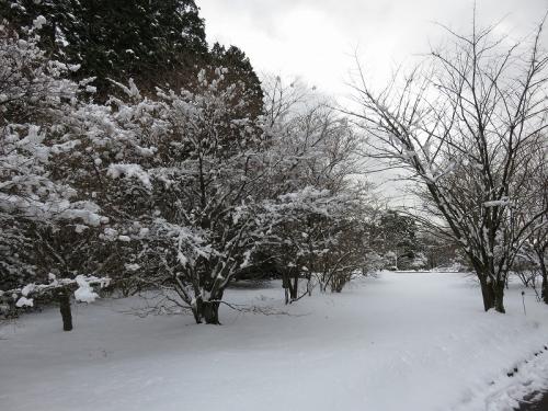 雪景色 VC170210
