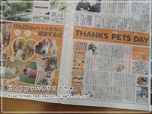 ペットに感謝日1