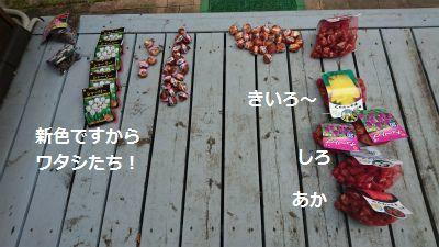 DSC_9839.jpg