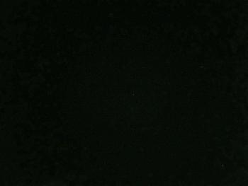 STAR2016123101.jpg