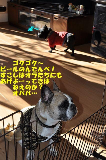 DSC_0058_20170105091840271.jpg