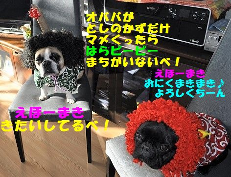 DSC_0232_2017020308551907b.jpg