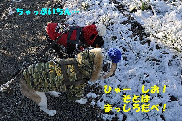 DSC_0296_20170213141253fb5.jpg