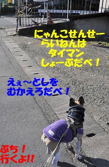 DSC_0670.jpg