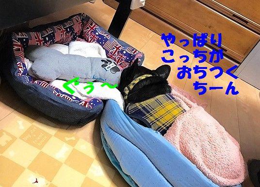 IMG_0357_.jpg