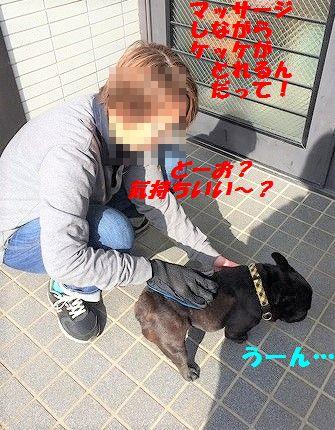 IMG_0635_2017020711240482b.jpg