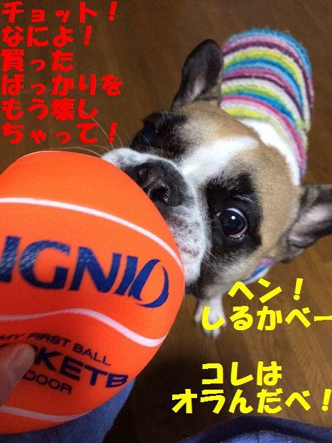 IMG_8860.jpg