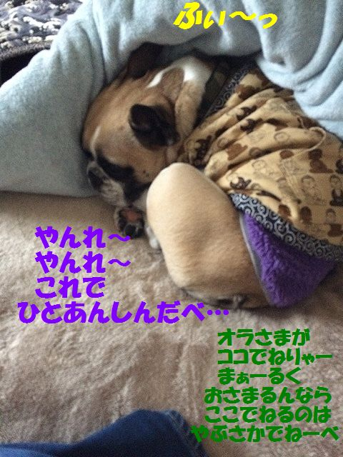 IMG_9575_20161219140229f2f.jpg