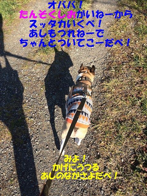 IMG_9885_2017011214212367e.jpg