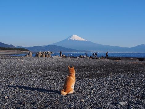富士山を拝む♪