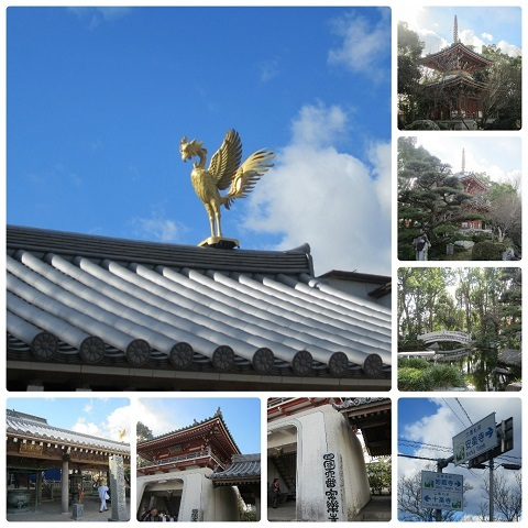 平成29年1月15日ブログ用安楽寺