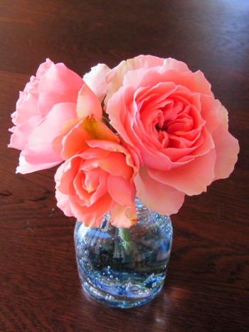 rose1702.jpg
