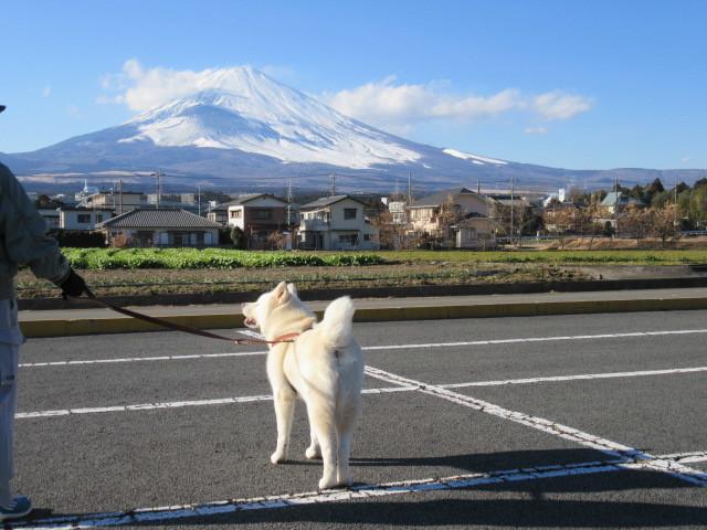 風が冷たいです!
