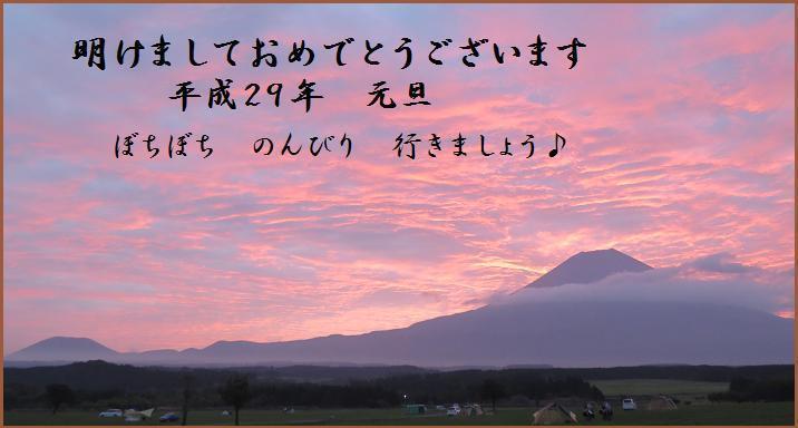 IMG_4869cc.jpg