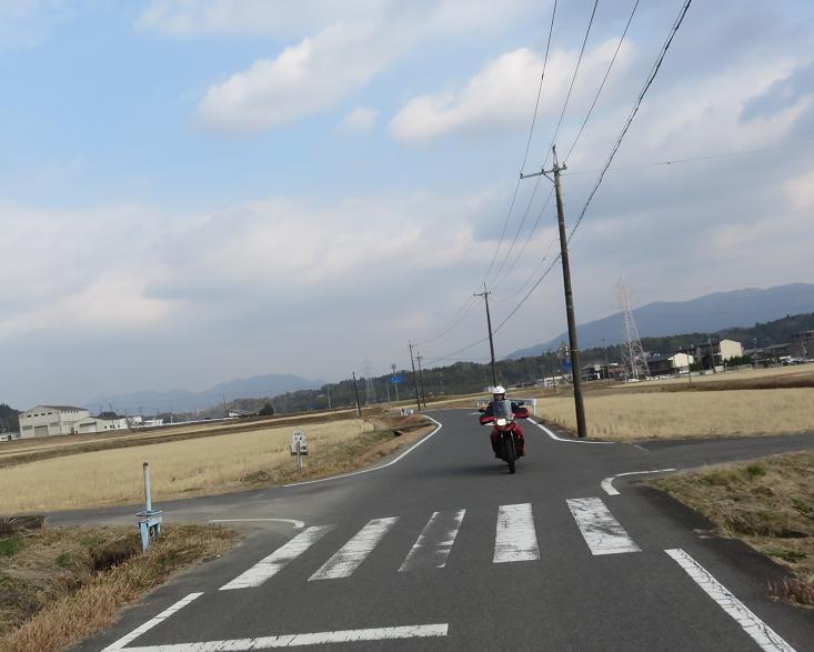 IMG_6207bb.jpg