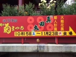 笠間 菊展
