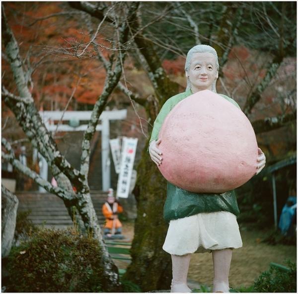3-ローライ3-桃太郎神社-portra400-2016-12-11-99090002_R