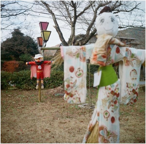 ローライ3-桃太郎神社-portra400-2016-12-11-99090010_R