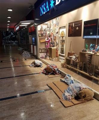 shops-help-stray-animals-istanbul-9-1.jpg