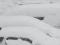 今日も雪B