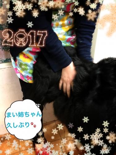 20170106011736c79.jpg
