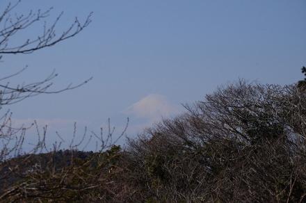 天園から富士山
