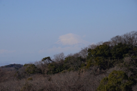 半僧坊から富士山