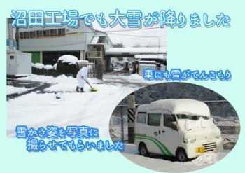 縮小大雪のコピー