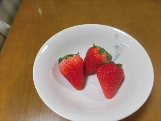 CIMG3746_R.jpg