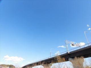 CIMG4313_R.jpg