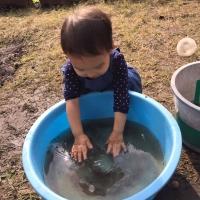 水遊び1 11・15
