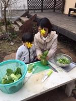 野菜4 12・20