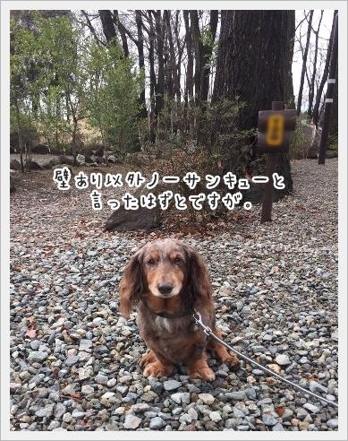 fc2_2017-01-10_01.jpg