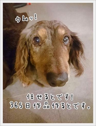 fc2_2017-01-25_04.jpg