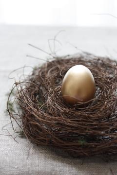 169205 egg