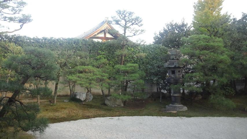 宮御殿から見たお庭