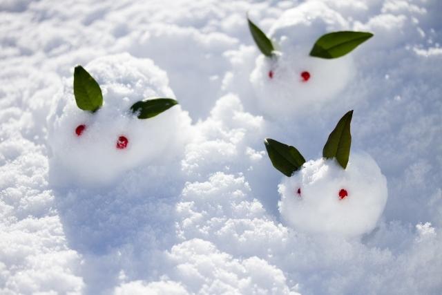 雪うさぎ 8dccc6b92f070fcba782a2201c28dc10_s