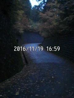 161119_1659~001