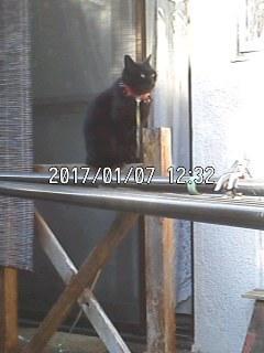 170107_1232~001