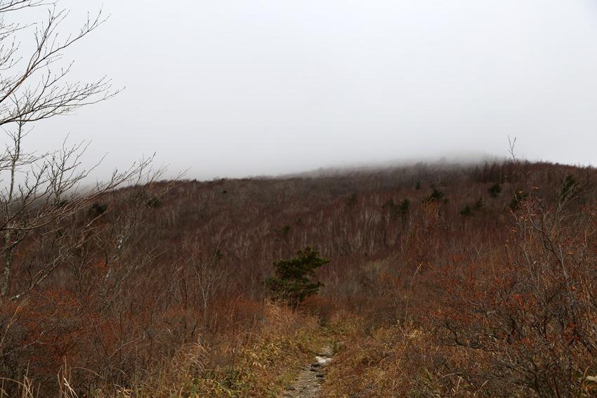 20161120登山道から見る山頂方面