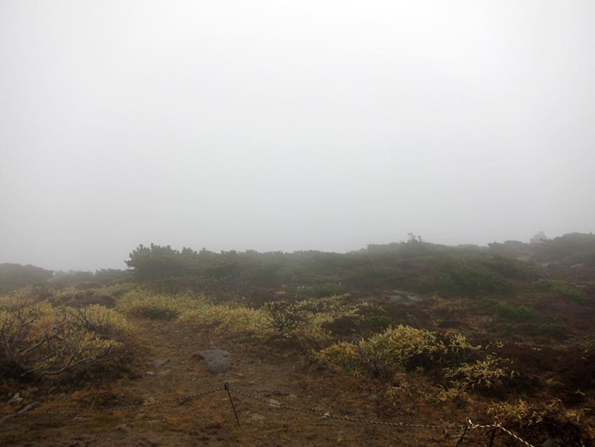 20161120雲と強風の山頂(白の世界)