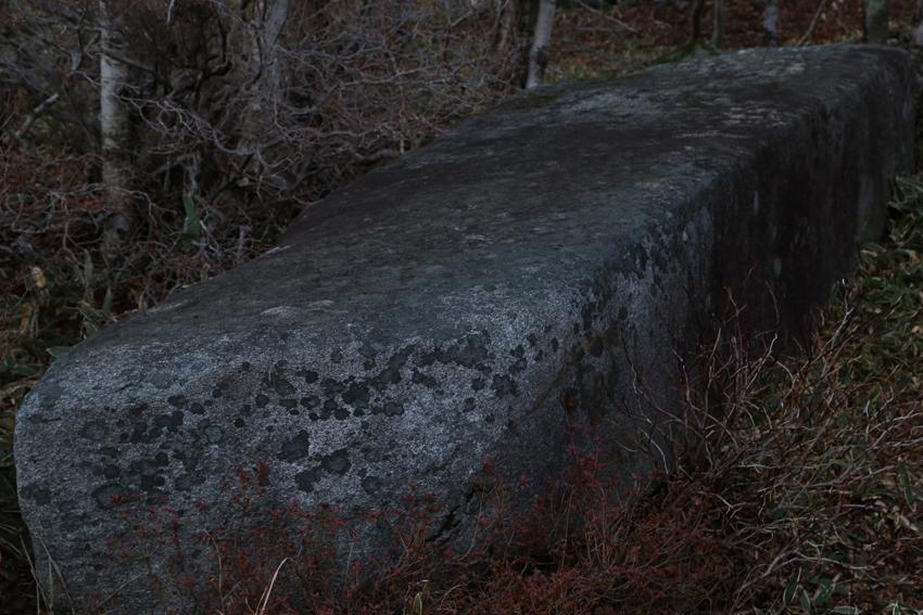20161120畳石