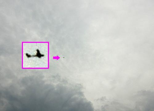 シーラカンス・ワン、飛行中 その1。