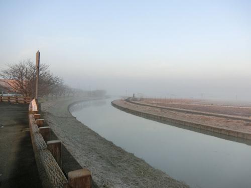 朝霧と水田と川。