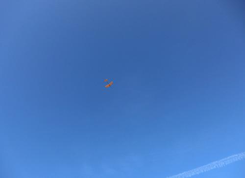 バルサのオバハン機、飛んでるトコ。 その1!