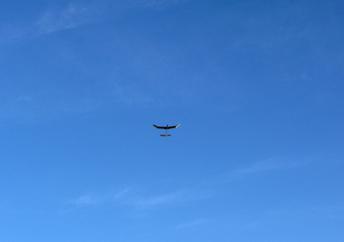 kh-16L、その2。