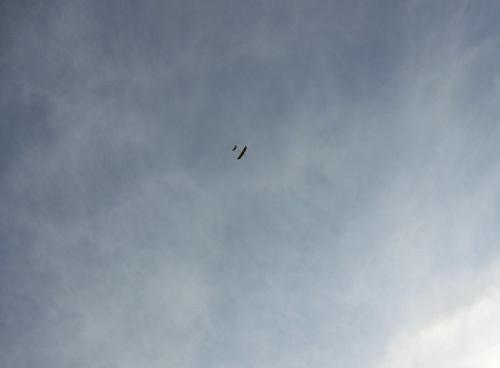 kh-15、飛んでるトコ。 その1。