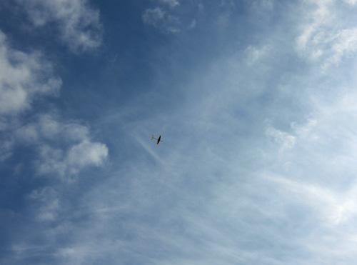 スタンダード・ワン、飛んでるトコ!その2。