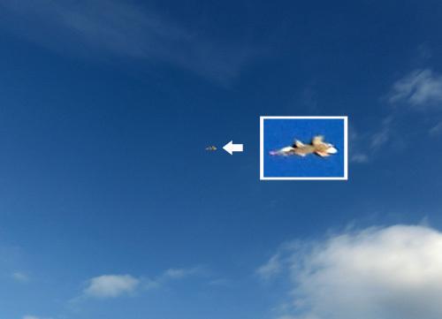 Xi-36、飛んでるトコ!